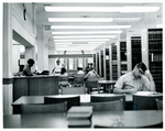 Studying in the Law Library
