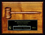 National Telecommunication Moot Court Competition: Best Oralist
